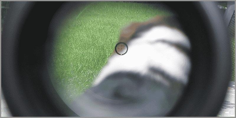 burris ar-332 ballistic cq reticle.jpg