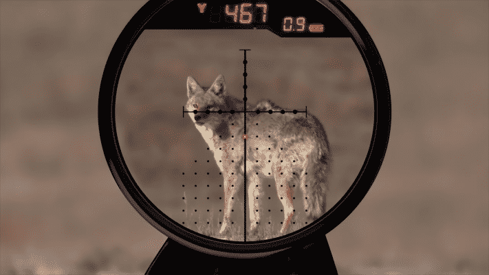 The Burris Eliminator III Reticle Display
