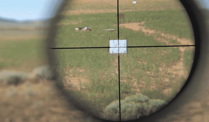 Leupold VX Freedom Rimfire magnification