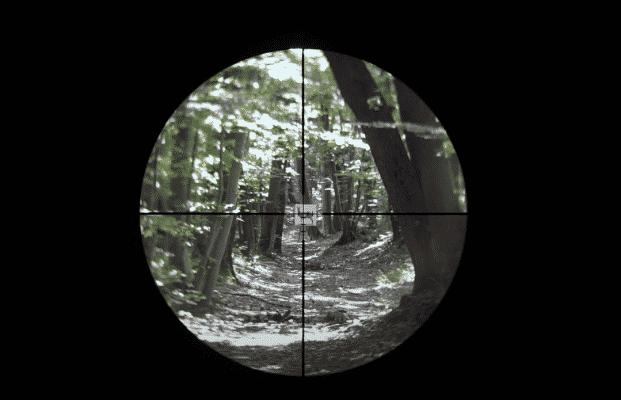 Vortex Optics Crossfire II reticle