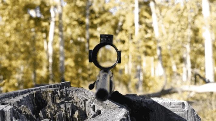 Leupold VX-3i 3.5-10×40 sight (2)